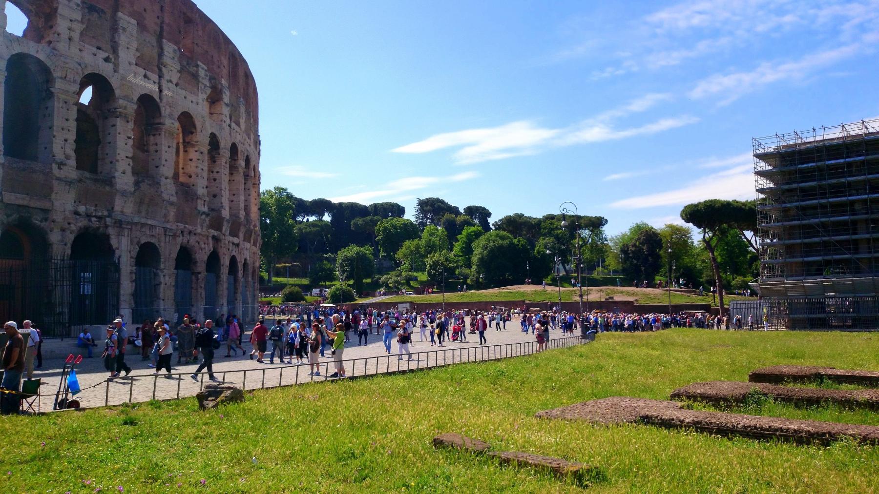 Colosseo 36