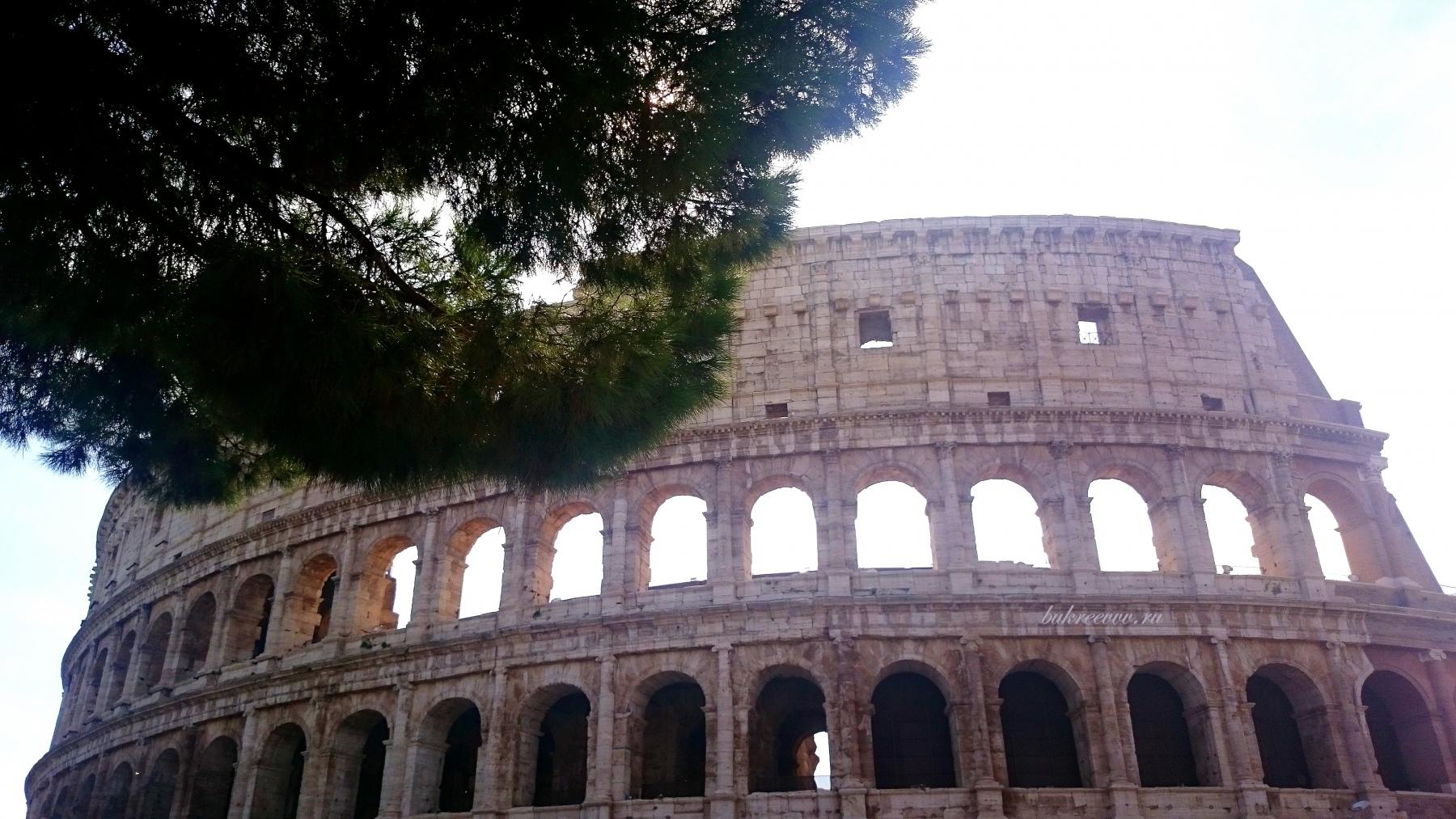 Colosseo 39