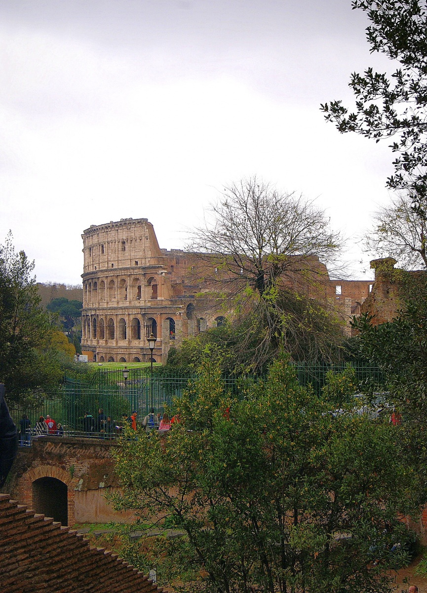 Colosseo 86