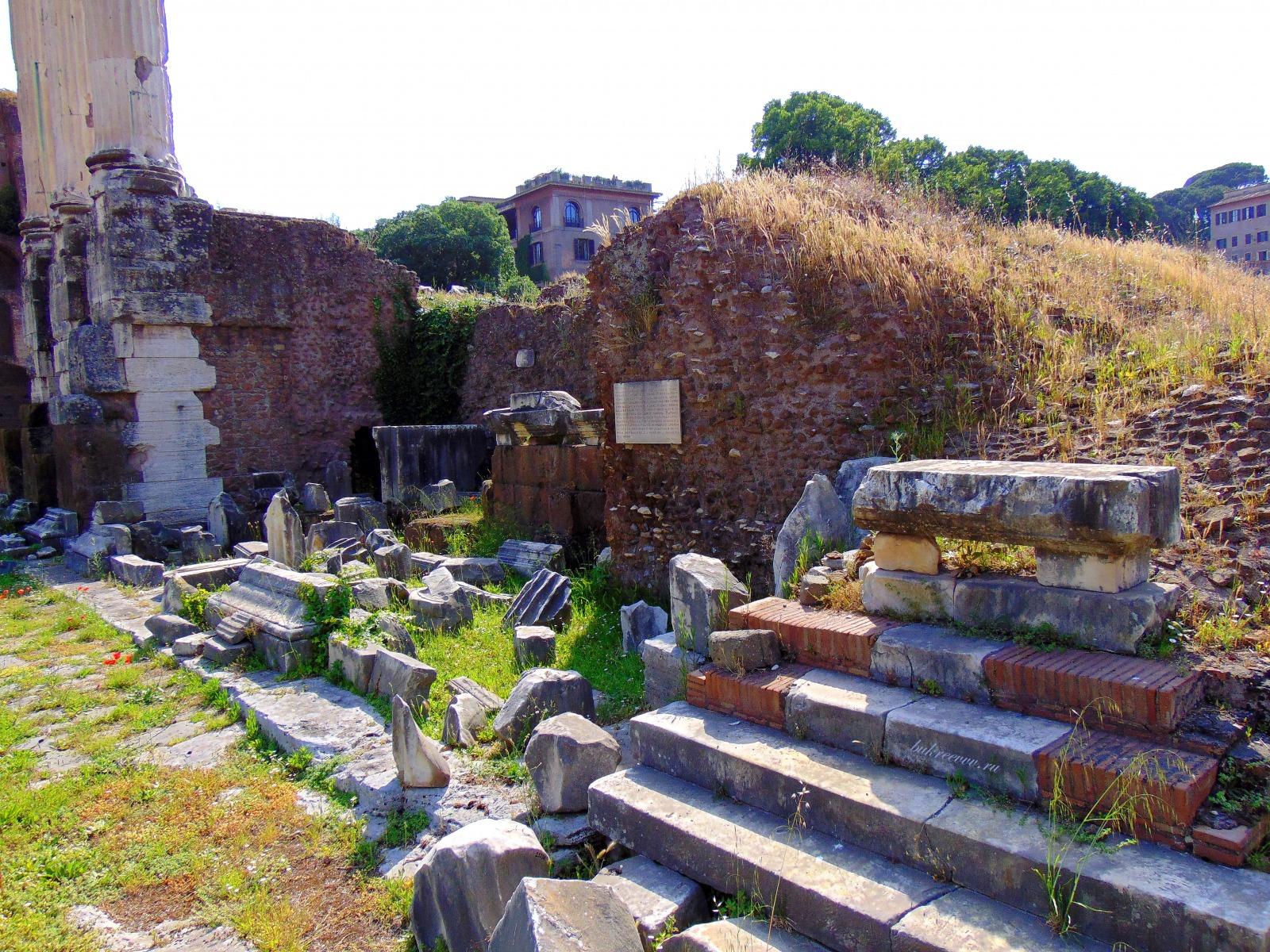 Foro Romano 115