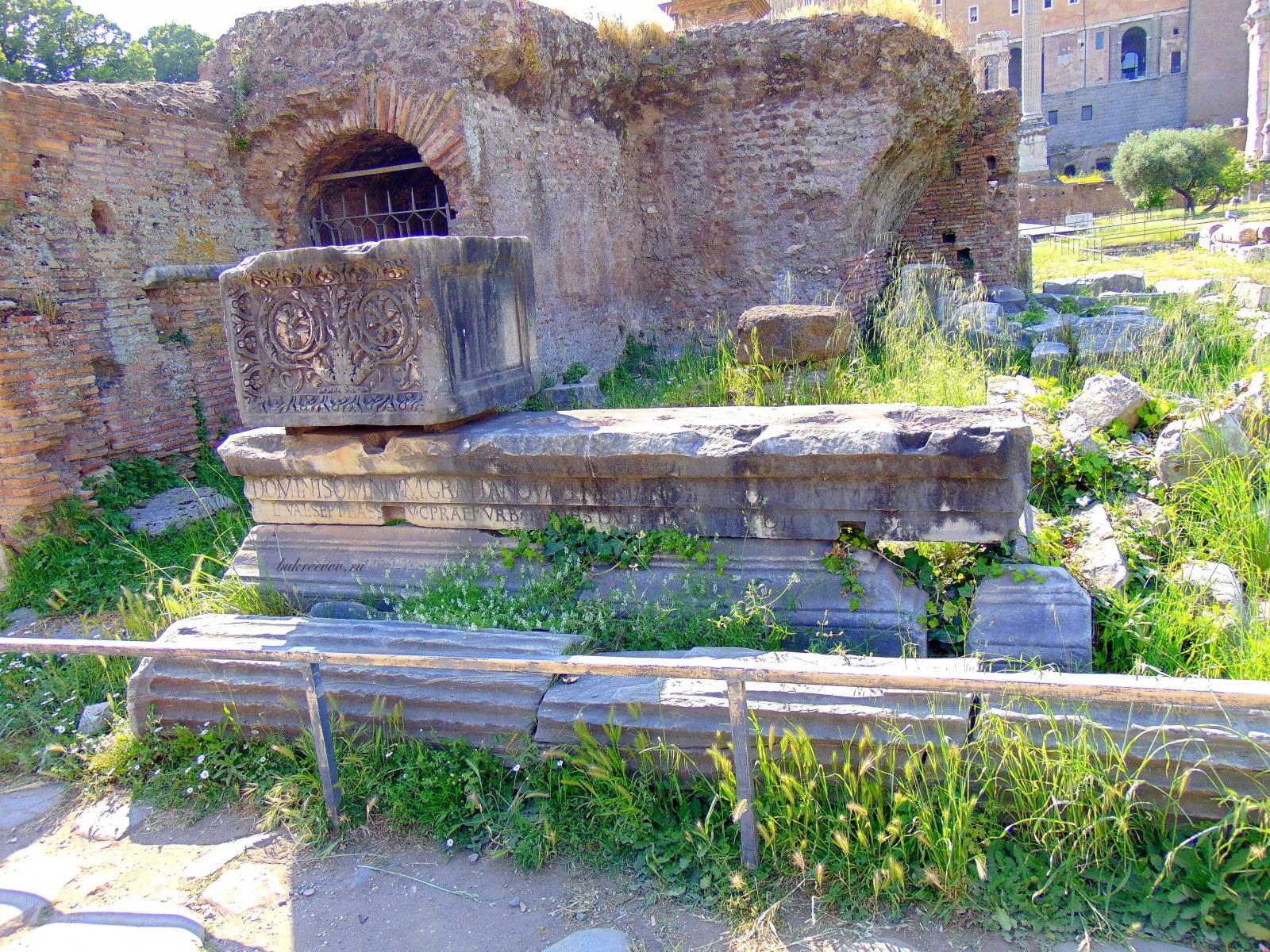 Foro Romano 116