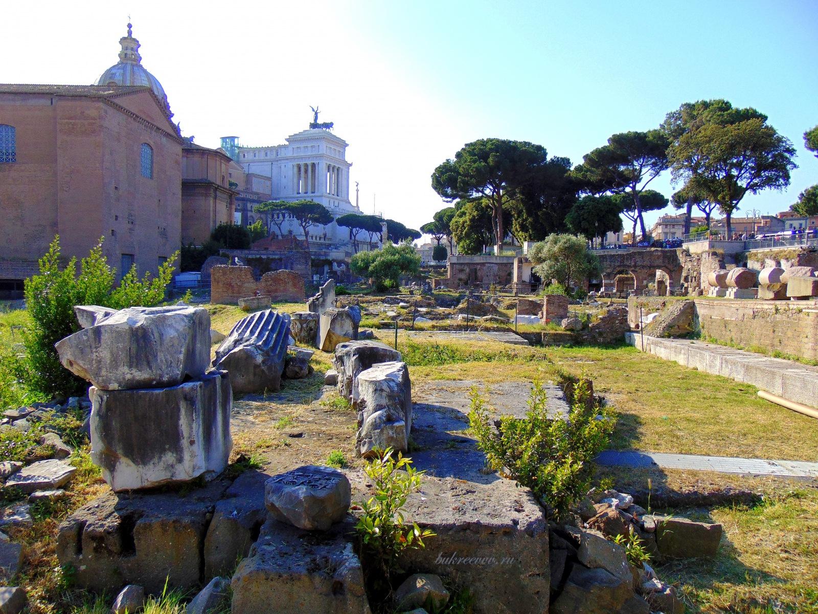 Foro Romano 141
