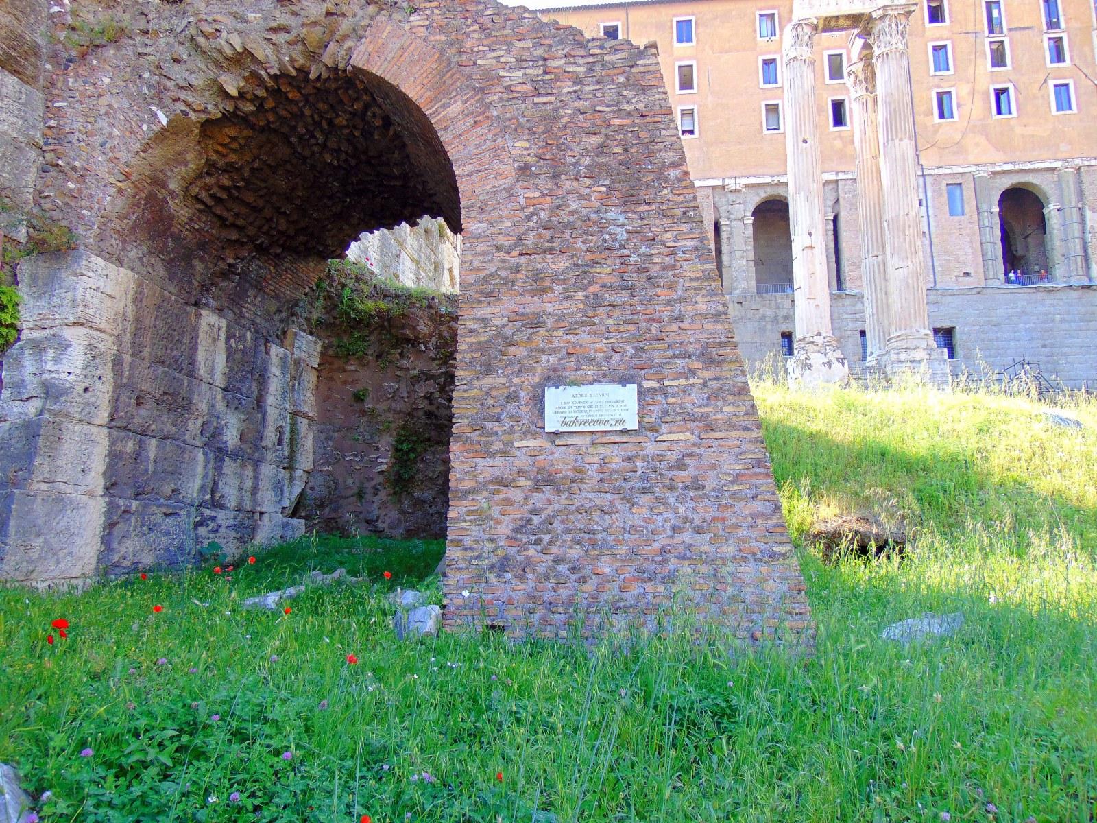 Foro Romano 145