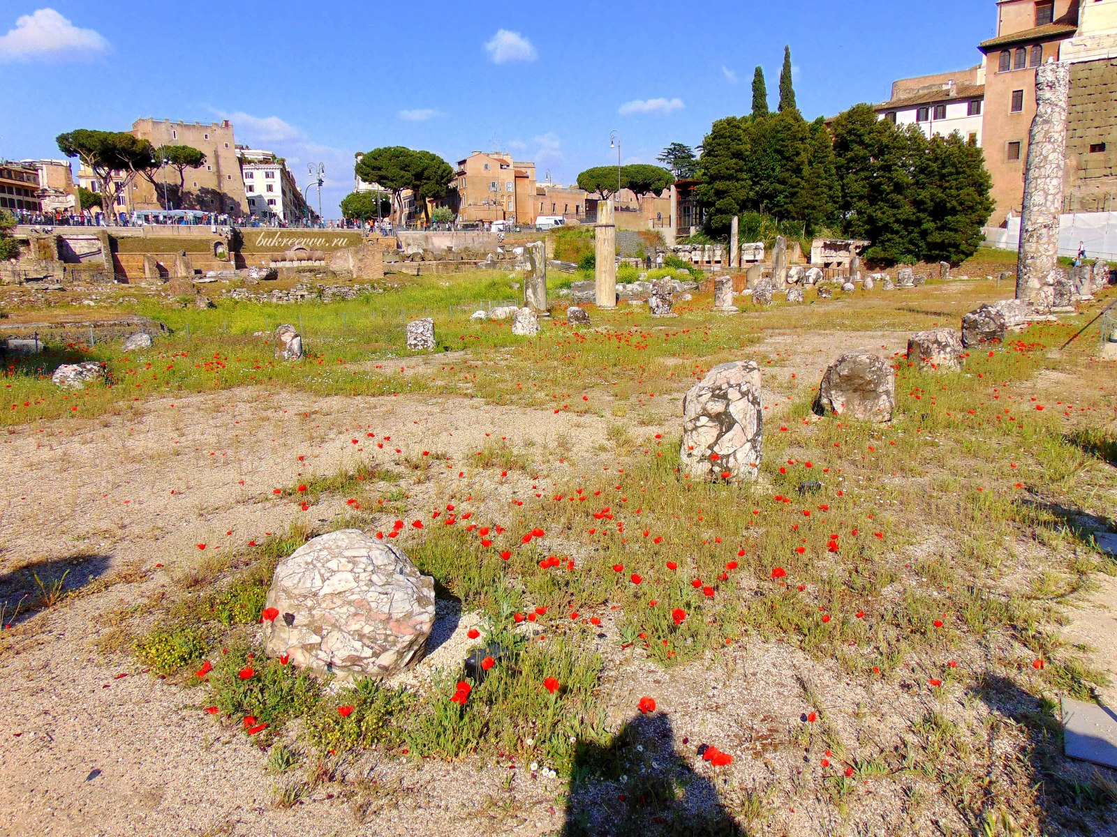 Foro Romano 148