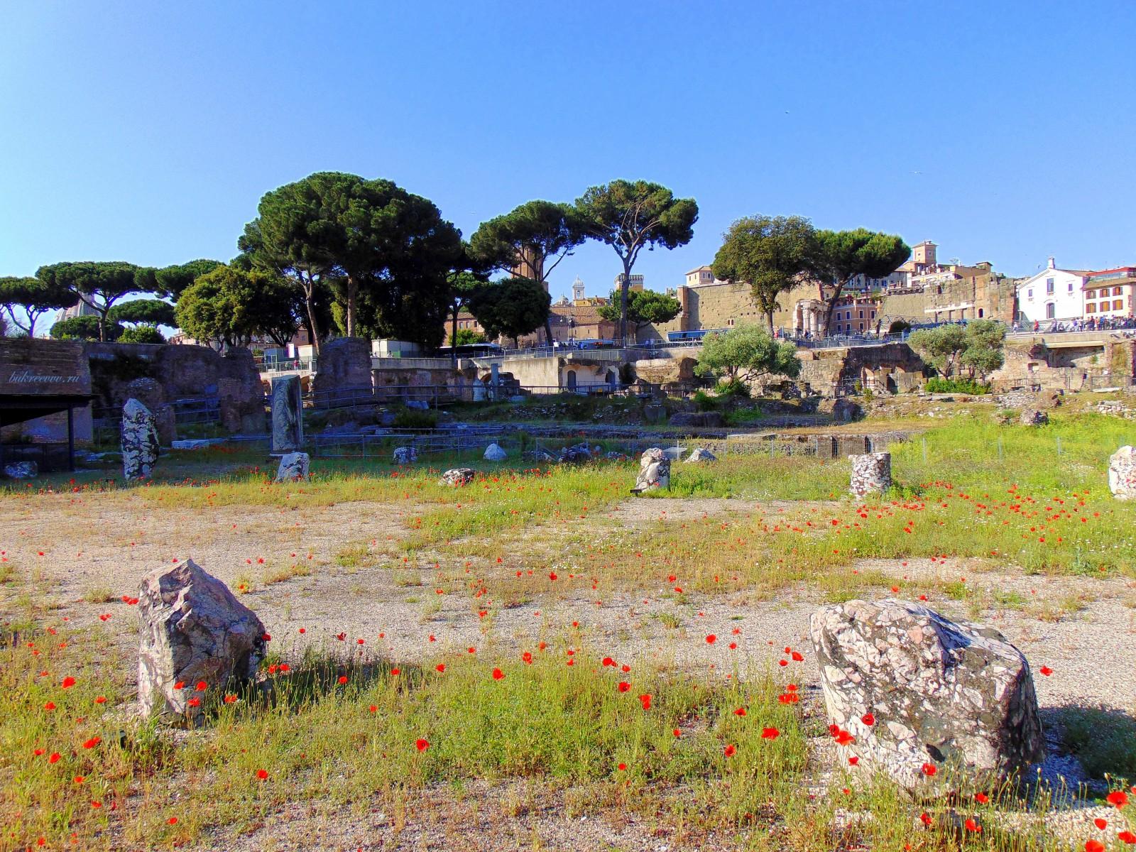 Foro Romano 150