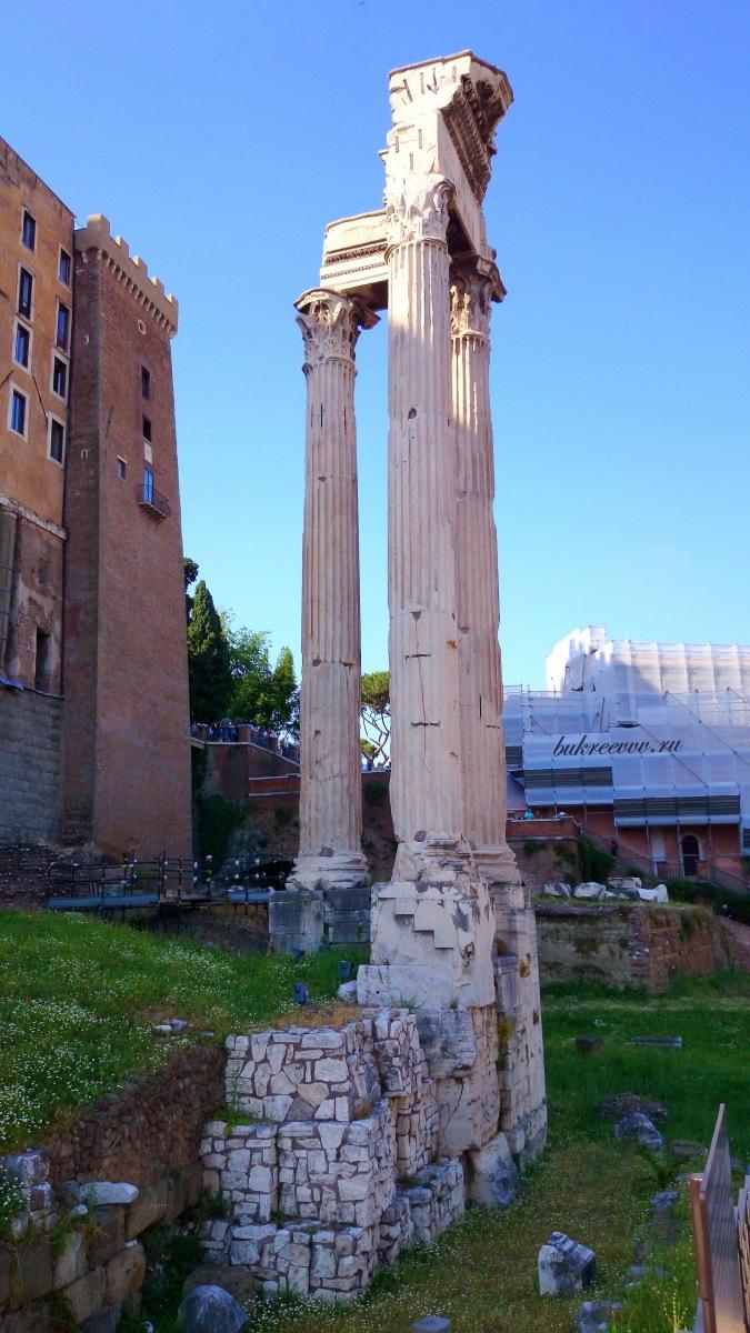 Foro Romano 158