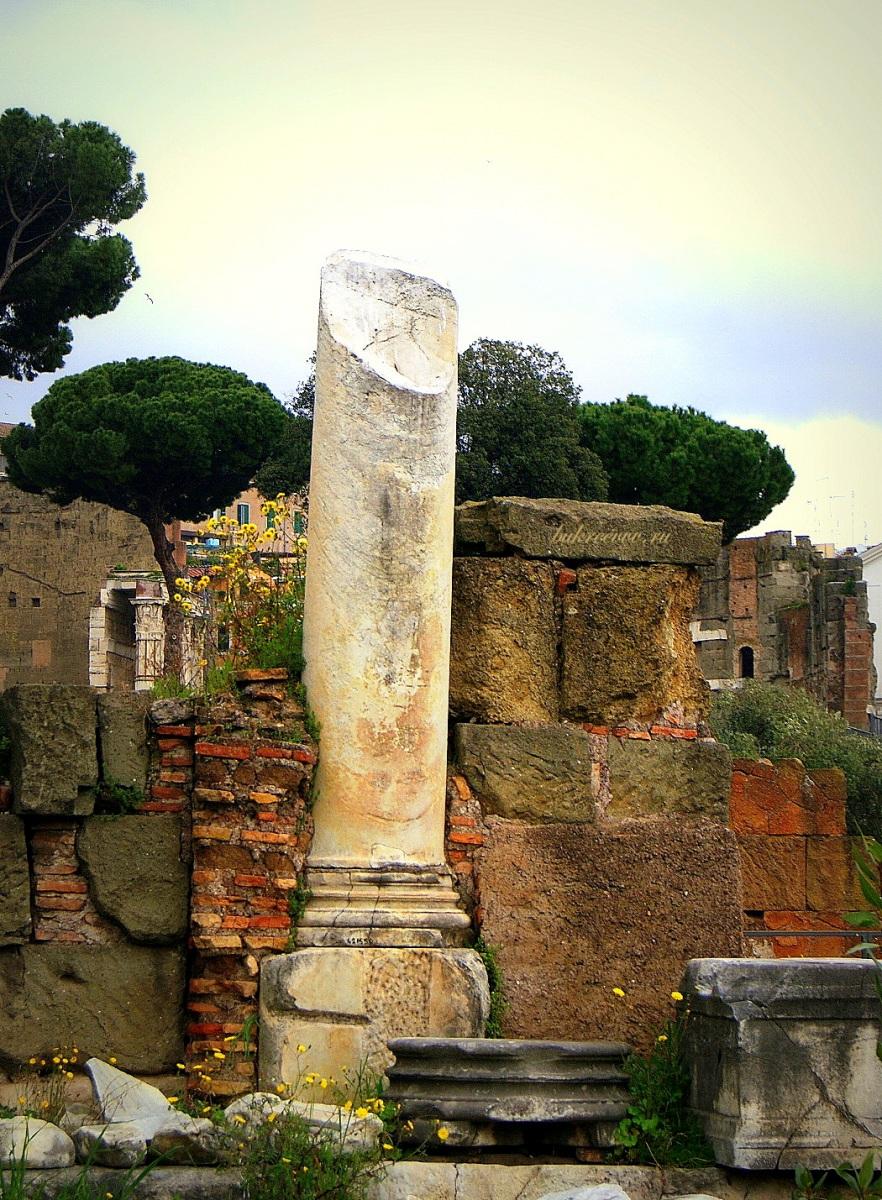 Foro Romano 164