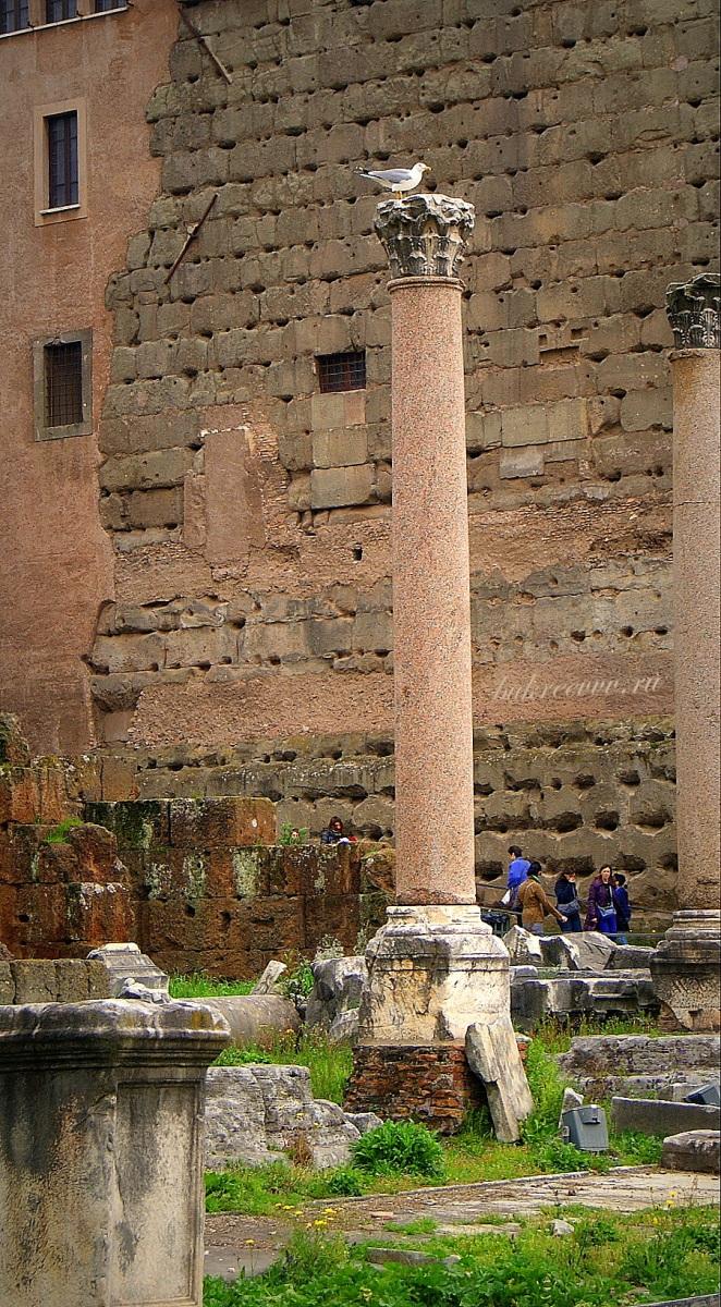 Foro Romano 168