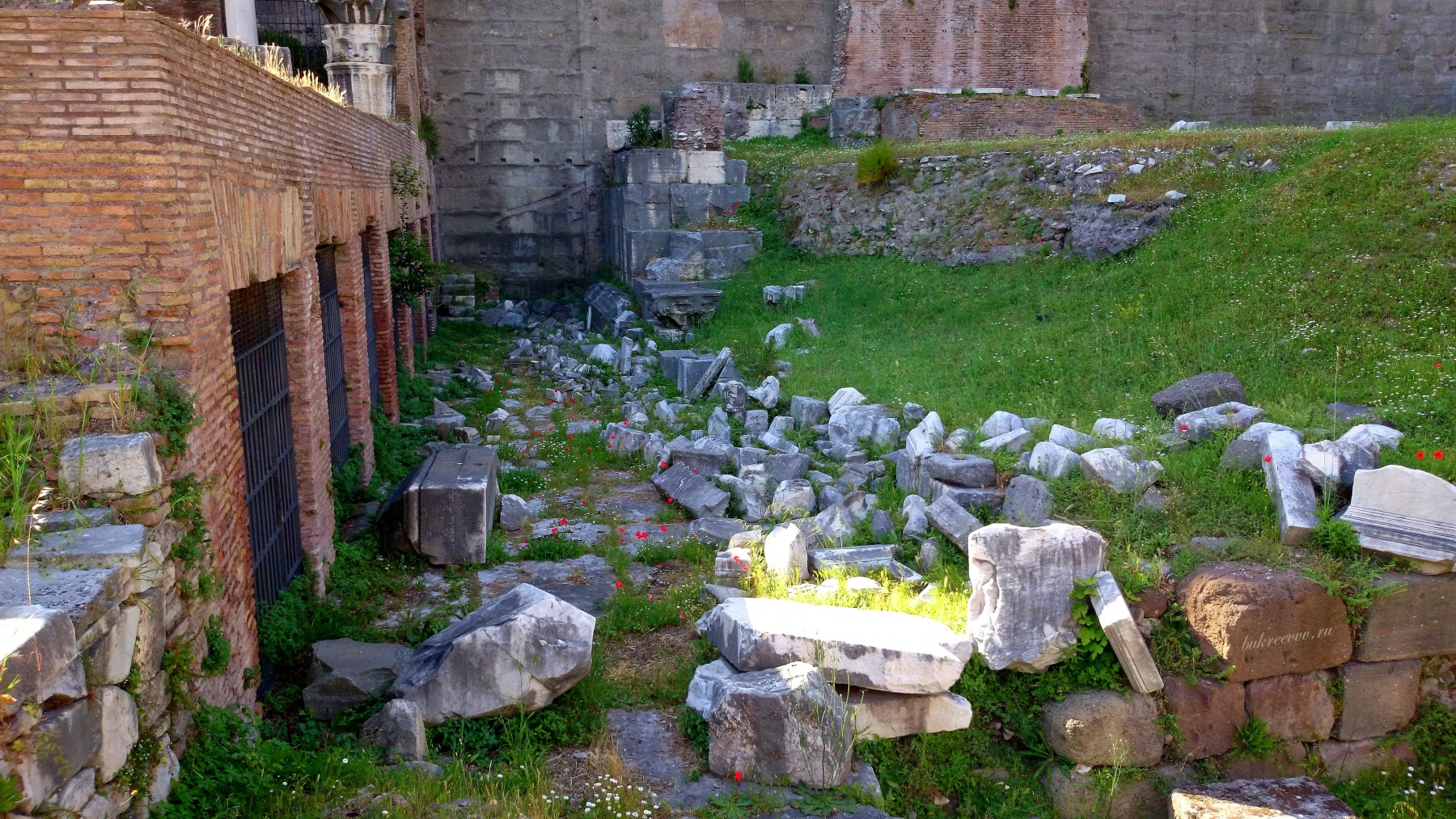 Foro Romano 56