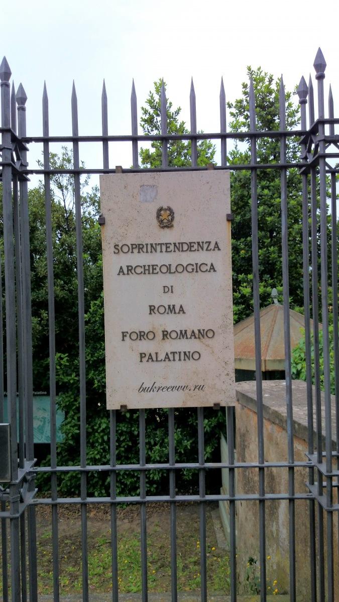 Foro Romano 80