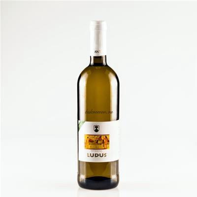 I vini DOC di Viterbo nel Lazio36