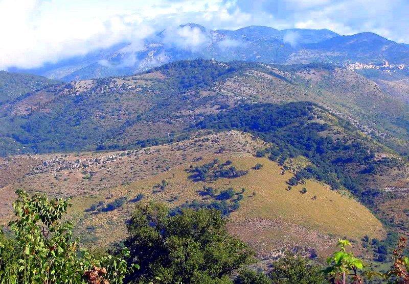 Monte Catillo 38
