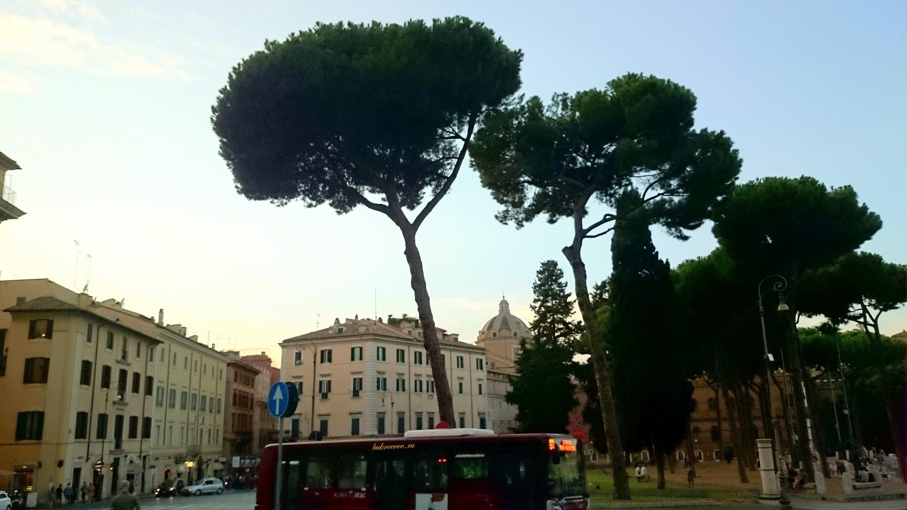 Piazza Venezia 47