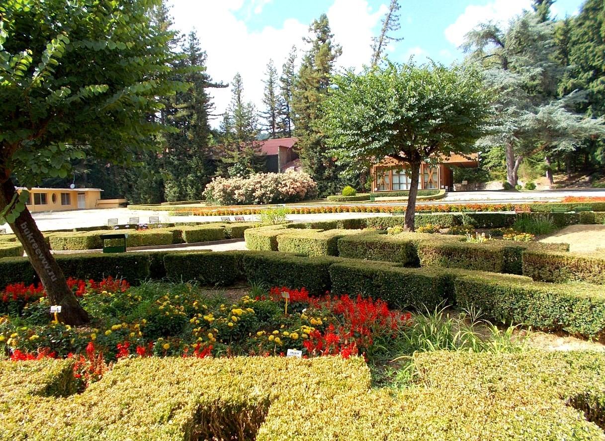 Terme di Fiuggi park34