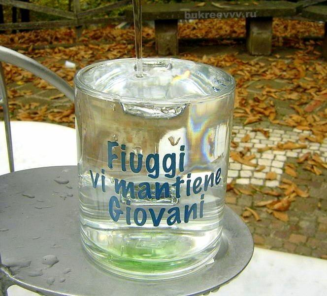 Terme di Fiuggi park43
