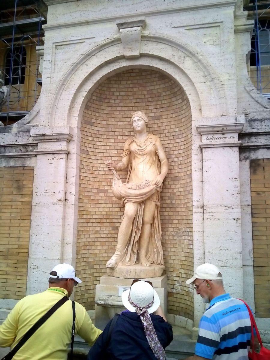 Vatican 137