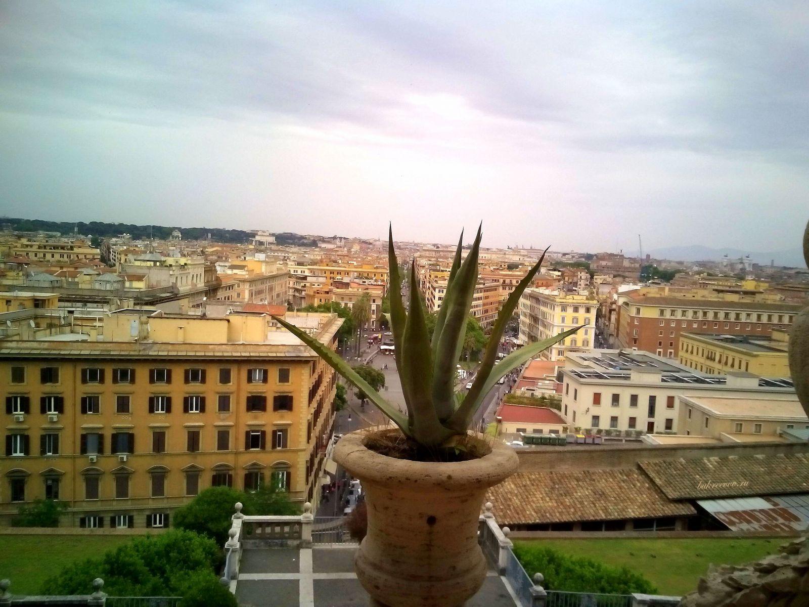 Vatican 97